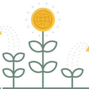 Wachsen, wachsen, wachsen – junge Unternehmen wollen hoch hinaus und sofort angreifen. Der falsche Weg, sagt Unternehmer Theo Lieven. Foto: shutterstock/Dooder