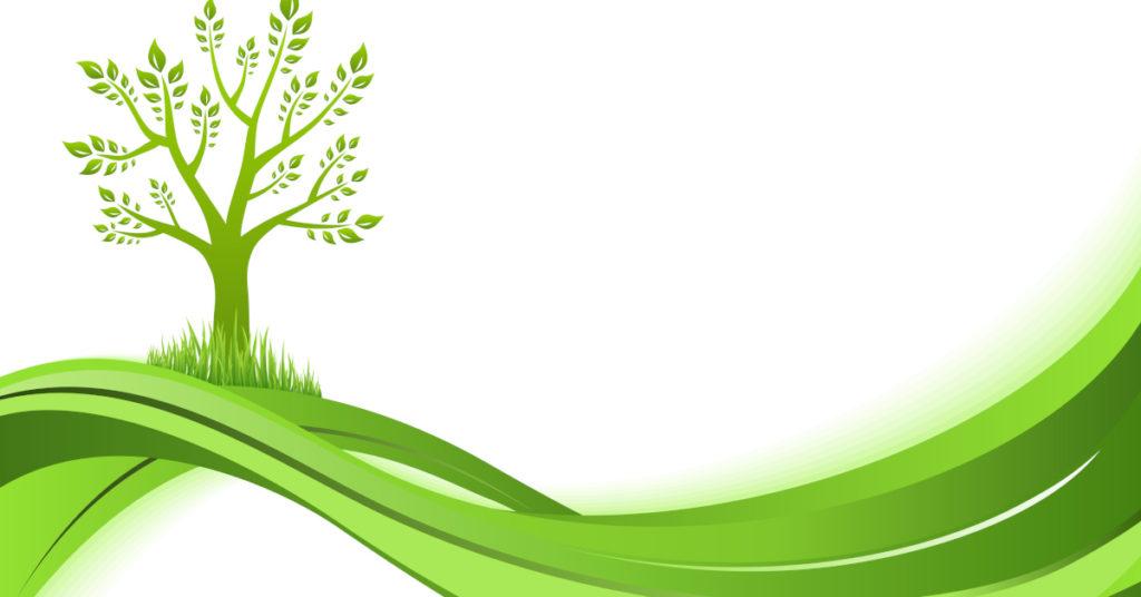 Auf der grünen Welle investiert es sich gut? Was kommt beim Thema grüne Investitionen auf Anleger zu?